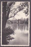 LIBIN. L'étang Du Moulin - Libin