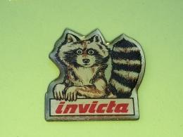 PINS 28 - INVICTA, ANIMAL, Procyon Lotor - Animaux
