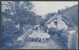 A Devonshire Lane, C.1910 - Photochrom Wedgewood Series Postcard - England