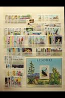 LESOTHO, LIBERIA, LIBYA NEVER HINGED MINT SETS, A Collection In A Stock Book Of Sets Spanning The 1940's To... - Stamps