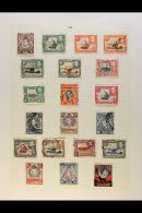 BRITISH EAST AFRICA 1936-1952 COMPREHENSIVE COLLECTION On Leaves, Mint & Used All Different Stamps, Inc KUT... - Stamps