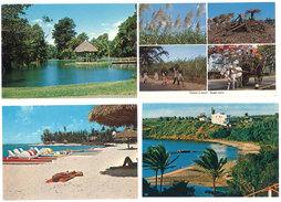 9 Cpsm/Cpm Ile Maurice / Mauritius - Canne à Sucre, Plages, Nénuphars, Séga ... (1575 B) - Maurice