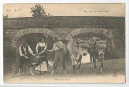 Cpa La Vie Aux Champs Entre Deux Feux Paysans Attelage Cachet Jassans Ain 01 1904 - Equipos