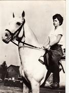 Cheval  Lippiza élevage Yougoslave - Paarden