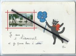 Carte Grand Modele - Je Suis à Liancourt .......( Chat /  Illustrateurs René ) - Liancourt