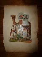 Année 1889 :Page De  Chromo Découpi (Ballade D'enfants Sur Un Dromadaire,guidée Par Un Bédouin)  Hauteur Image = 21cm - Victorian Die-cuts