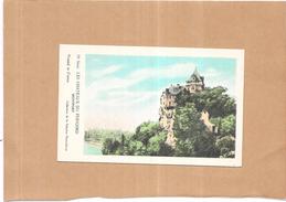 LOT De 10 CPA COLORISEE Des CHATEAUX Du PERIGORD - VAN - - Cartes Postales