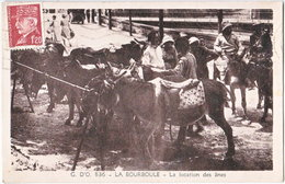 63. LA BOURBOULE. La Location Des ânes. 836 - La Bourboule