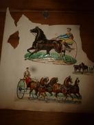 Année 1889 :Page De 3 Chromos-découpis (Hippisme Avec Sulky,Cocher Sur Fiacre Attelé De 4 Chevaux ,3 Chevaux En Repos) - Victorian Die-cuts