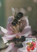 YUGOSLAVIA Maximum Card 2988,bees - Abeilles