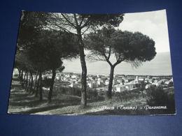 Cartolina Pineto ( Teramo ) - Panorama 1954 - Teramo