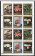 Corée Du Nord Minerals Mineraux Mushrooms Champignons  Feuillet Rare - Minéraux