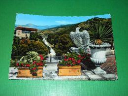 Cartolina Isola D'Elba - Portoferraio - L'Aquila Napoleonica A San Martino 1959 - Livorno