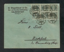 DR 1923, Inflation, Bedarfsbrief Von Halberstadt Nach Wiedelah Am 29.8.1923, Portogerecht Frankiert Mit Mi. # 273 (20x) - Oblitérés