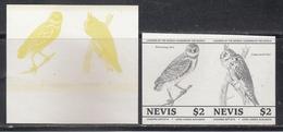 Nevis  Owls  Birds  Colour Trials  2v  Imperf  Pairs # 95175 - Owls