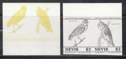 Nevis  Owls  Birds  Colour Trials  2v  Imperf  Pairs # 95177 - Owls