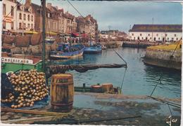 Loire  Atlantique :   LE  CROISIC :  Les  Quais , Pêche ,port, 1967 - Le Croisic