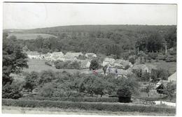 Weillen - Panorama - Circulée En 1954 - Carte Photo - 2 Scans - Onhaye