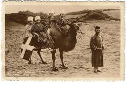 CHINA - MONGOLIE - Chameau Dans Le Désert De Gobi - Kameel In De Gobiwoestijn - 2 Scans - Cartes Postales