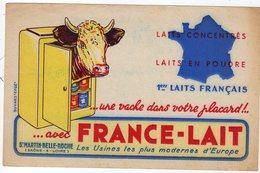 Juin17   78666      Buvard   France Lait   St Martin Belle Roche - Electricité & Gaz