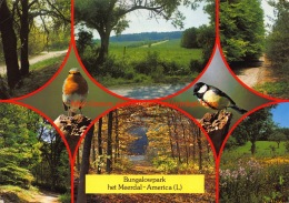 Bungalowpark Het Meerdal - America - Horst