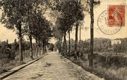 77 PONTHIERRY Route De Sainte-Assise - Saint Fargeau Ponthierry