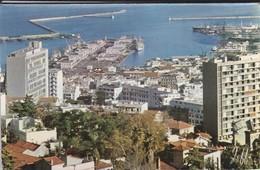 ALGERIE---ALGER---panorama--voir 2 Scans - Alger
