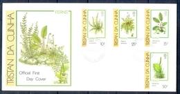 J530- Tristan Da Cunha 1989. Ferns Plants. Flowers. - Tristan Da Cunha