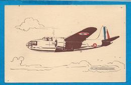 Avion  DOUGLAS   Multiplace De Bombardement - 1939-1945: 2ème Guerre