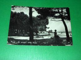 Cartolina Pineto - La Spiaggia Dalla Pineta 1952 - Teramo