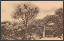Old Abbey Arches, Tresco Gardens, Isles Of Scilly, C.1910s - King Postcard - Scilly Isles