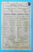 WW2 - REGNO D'ITALIA - GOVERNO DELLA DALMAZIA - ATTESTATO DI MATURITA - SPALATO 1941. Croatia Croazia ITALY OCCUPATION - Diploma & School Reports