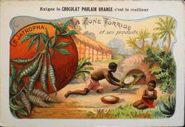 CHROMO - Chocolat POULAIN ORANGE - La Zone Torride Et Ses Produits - N°22 - Le Jatropha Manihot - En TBE - Poulain
