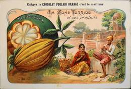 CHROMO - Chocolat POULAIN ORANGE - La Zone Torride Et Ses Produits - N°20 - Le Pachira - En TBE - Poulain