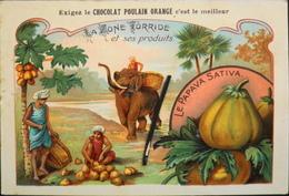CHROMO - Chocolat POULAIN ORANGE - La Zone Torride Et Ses Produits - N°13 - Le Papaya Sativa - En TBE - Poulain