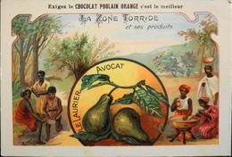CHROMO - Chocolat POULAIN ORANGE - La Zone Torride Et Ses Produits - N°7 - Le Laurier Avocat - En TBE - Poulain