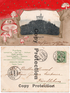 WARTBURG-SÄLI OLTEN  1905 LÄUFELFINGEN RÜSCHLIKON FUNGHI CHAMPIGNONS PILZ - BL Bâle-Campagne