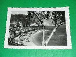 Cartolina Noli ( Savona ) - Panorama 1951 - Savona