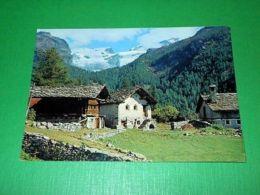 Cartolina St. Jacques ( Val D' Ayas ) - Baite Alle Pendici Del M. Rosa 1979 - Italy