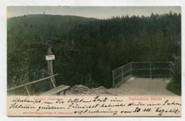GERMANY - AK299909 Vogtländische Schweiz - Loreley - Plateau - Vogtland