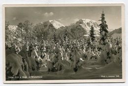 GERMANY - AK299931 Hoher Göll U. Brett Im Winterkleid - Berchtesgaden