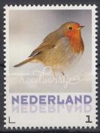 Nederland - 24 Januari 2017 - Wintervogels - Roodborstje - Vogels/birds/vögel/oiseaux - MNH - Zangvogels