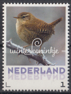 Nederland - 24 Januari 2017 - Wintervogels - Winterkoninkje - Vogels/birds/vögel/oiseaux - MNH - Zangvogels