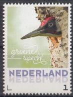 Nederland - 20 Februari 2017 - Lentevogels - Groene Specht - Vogels/birds/vögel/oiseaux - MNH - Climbing Birds