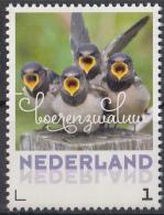 Nederland - 6 Juni 2017 - Zomervogels - Boerenzwaluw - Vogels/birds/vögel/oiseaux - MNH - Zangvogels