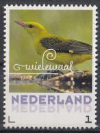 Nederland - 6 Juni 2017 - Zomervogels - Wielewaal - Vogels/birds/vögel/oiseaux - MNH - Zangvogels