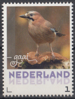Nederland - September 2017 - Herfstvogels - Gaai- Vogels/birds/vögel/oiseaux - MNH - Zangvogels