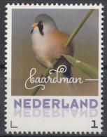 Nederland - September 2017 - Herfstvogels - Baardman - Vogels/birds/vögel/oiseaux - MNH - Zangvogels
