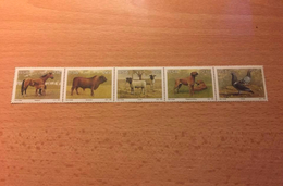 """Sud Africa """"Animal Breeding In South Africa"""", Strip Of 5, Anno 1991 - Sud Africa (1961-...)"""