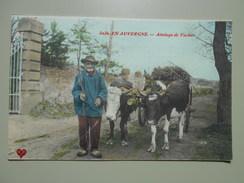 PUY DE DOME EN AUVERGNE ATTELAGE DE VACHES - Auvergne Types D'Auvergne